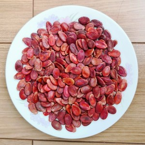 High Quality Exporting Snow White Pumpkin Seeds -